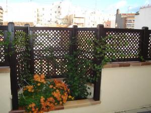celosias que se usan para cerrar y decorar las jardineras de la terraza
