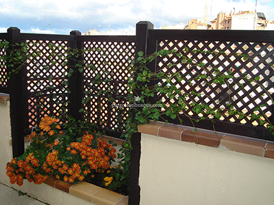 detalle de celosías con plantas y espacio para jardinera