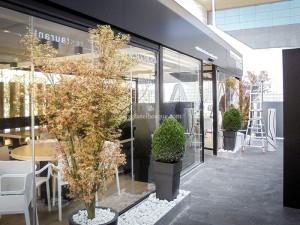 restaurante cerrado con estructura de madera y cerramiento de cristal ahumado